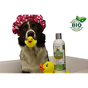 Pro-Pet Works Hypoallergenic shampoo