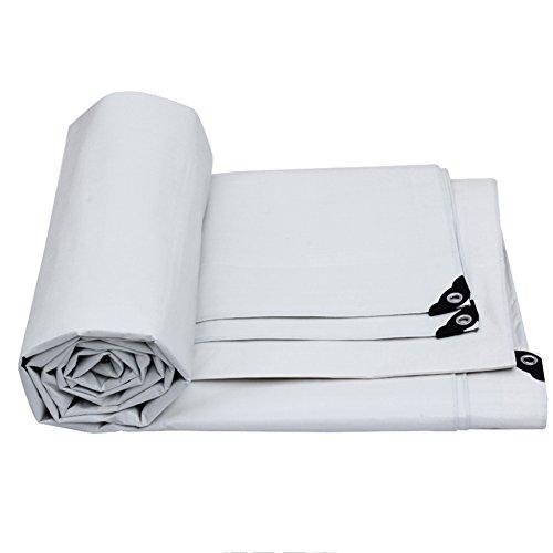 スクランブルサーフィン吹きさらしJIANFEI オーニング 防水 サンバイザー 日焼け止め 雨よけ 耐候性 無味 PVC 2色、 175G/m2、 厚さ0.32MM、 6サイズオプション (色 : シルバーホワイト, サイズ さいず : 7m × 5m)
