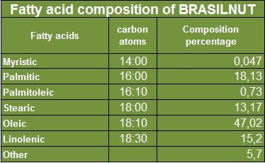 Brazil Nut Oil (Castanha do Pará) (16 Oz) - WHOLESALE PRICE and - Product of the Brazilian Amazon - Extraction: Cold Pressed