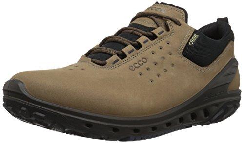 ECCO Men's Biom Venture Leather Gore-TEX Tie Hiking Shoe, Birch, 44 M EU (10-10.5 US)