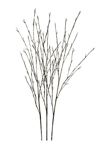 Hi-Line Gift LtdFloral Lights Lighted Willow Branch (set of 3 Branches) with 144 bulbs, 48 inches