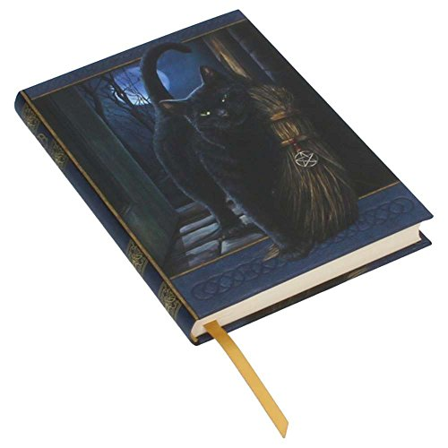 Lisa Parker A Brush with Magick Black Cat Hard Cover Embossed Collector Journal Book by Nemesis