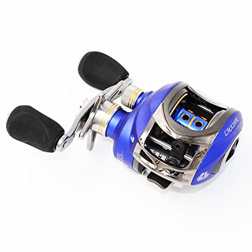 Berrypro Saltwater Casting Reel Low Profile Baitcast Fishing Reel 10+1 Ball Bearings Baitcaster Reel 6.3:1 Baitcasting Reel Magnetic Brake System Fishing Reel (Blue(right hand))