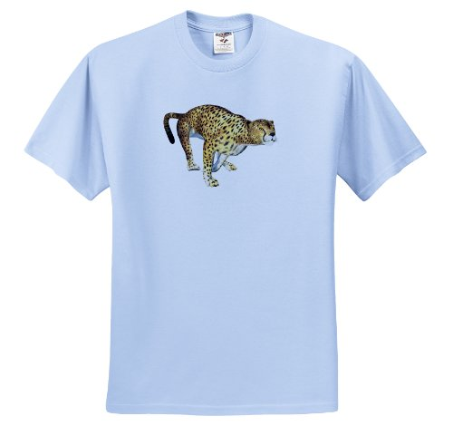Boehm Graphics Animal - Cheetah - T-Shirts - Adult Light-Blue-T-Shirt Large - Pics Girls Cheetah