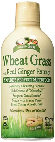 Wheat Grass Diet - Garden Greens Wheat Grass Liquid with Real Ginger Extract, Nature's Perfect Superfood, 32 servings
