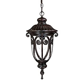 Acclaim 2116MM Naples Collection 1-Light Outdoor Light Fixture Hanging Lantern, Marbleized Mahogany