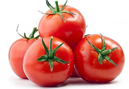 tomato seeds siberia - 2