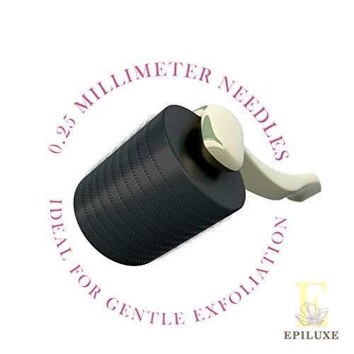 Derma Roller Jade Roller Vitamin C Hyaluranic Face Serum Kit - Luxury Professional 3 in 1 Beauty Products Set, 0.25mm Titanium Facial MicroNeedling Tool, Rose Quartz Jade Wand, Combination Serum