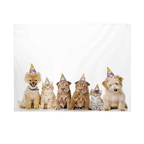 (Birthday Decorations for Kids Photography Background,Shelter Dogs Terrier Cats with Cone Hats Party Theme Backdrop for Studio,7x5ft)