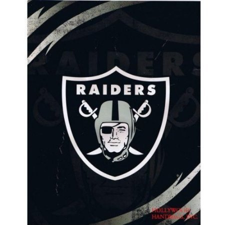 NFL Football Oakland Raiders Queen Mink Raschel Plush Blanket (Raschel Plush Blanket Queen)
