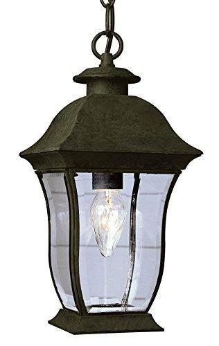 Transglobe Lighting Outdoor 1 Light Hanging Lantern in US - 3