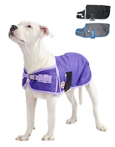 Derby Originals Solid Color Horse-Tough 600D Waterproof Ripstop Nylon Winter Dog Coat 150g Polyfil with One Year Warranty ()