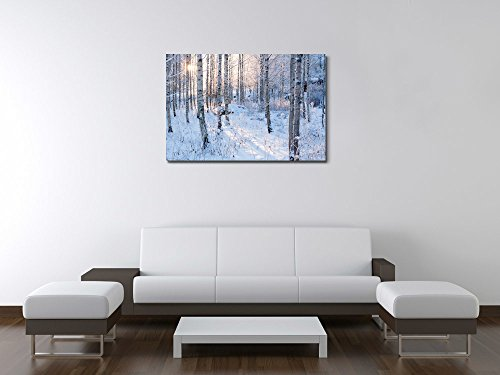 Snow Covered Forest with Sunshine Peeking Through Wall Decor