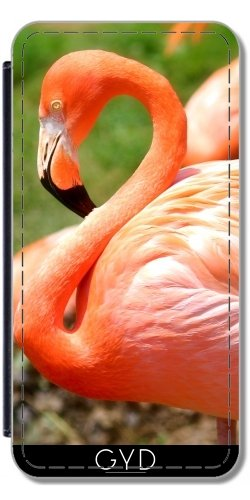 Leder Flip Case Tasche Hülle für Apple Iphone 7 / Iphone 8 - Flamingo by UtArt