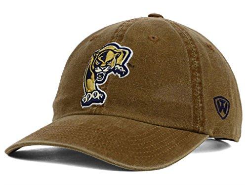 International Golden Panthers - NCAA Casual Caps OSFM (Florida International Golden Panthers)