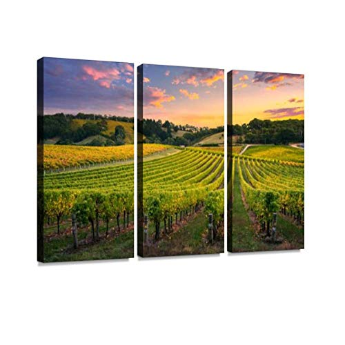 BELISIIS Vineyard Sunset Wall Artwork Exclusive Photography Vintage Abstract Paintings Print on Canvas Home Decor Wall Art 3 Panels Framed Ready to Hang