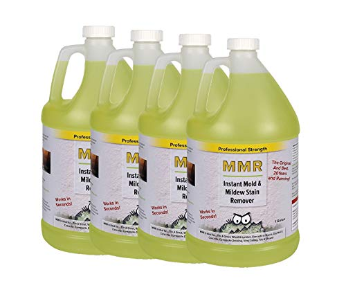 Professional 1-gal. Instant Mold and Mildew Stain Remover (4-Pack) (Best Mold Removal Products)