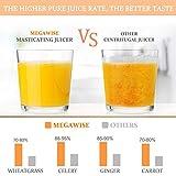 MegaWise Pro Slow Masticating Juicer, 95% Juice