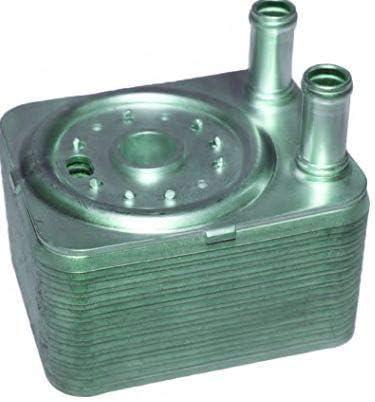 Radiador aceite bitrh 8917: Amazon.es: Coche y moto