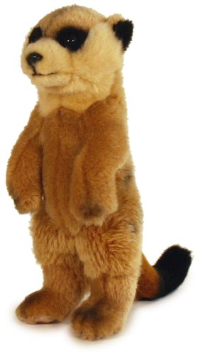 24cm Meerkat Soft Plush Toy
