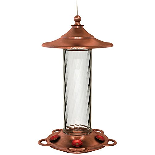 Most Popular Bird Feeders
