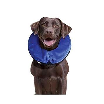 Kong Cloud E-Collar para perros y gatos XS), por Kong: Amazon.es: Productos para mascotas