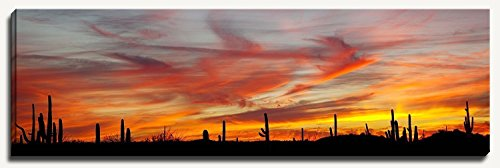 12 x 36 inch panoramic canvas gallery wrapped photograph of a soothing colorful red and yellow desert sunset among the Saguaro cactus in Arizona. by Bob Estrin Fine Art Photography