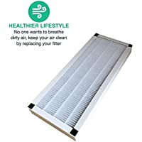 2 Replacements for Idylis F HEPA Style Air Purifier Filter Fits AC-38, Compatible With Part # 560885, by Think Crucial