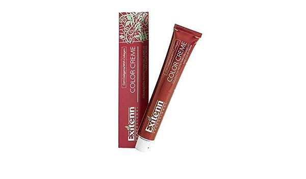 Exitenn Tinte de Pelo - 60 ml: Amazon.es: Belleza