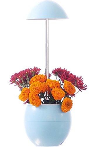 Bloom Garden Light Pot