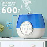 Pure Guardian H4810AR Ultrasonic Warm and Cool Mist