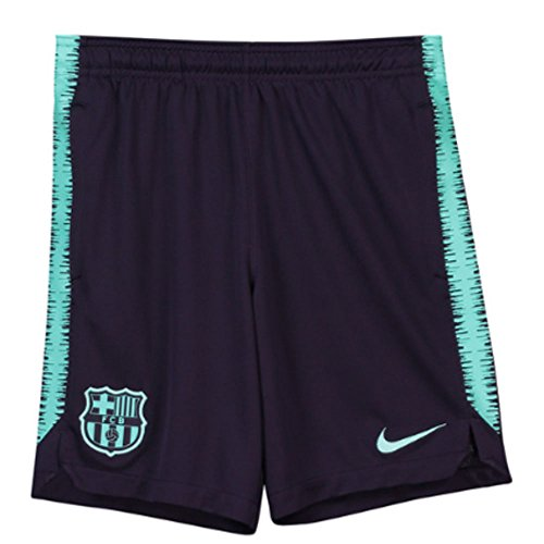 NIKE 2018-2019 Barcelona Squad Training Shorts (Purple) - Kids
