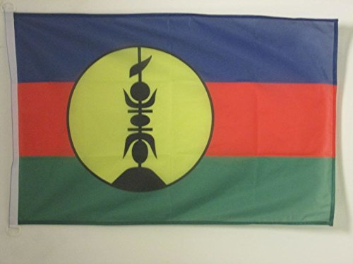 AZ FLAG New Caledonia Flag 2' x 3' for Outdoor - New Caledonian Flags 90 x 60 cm - Banner 2x3 ft Knitted Polyester with Rings - New Caledonia Flag