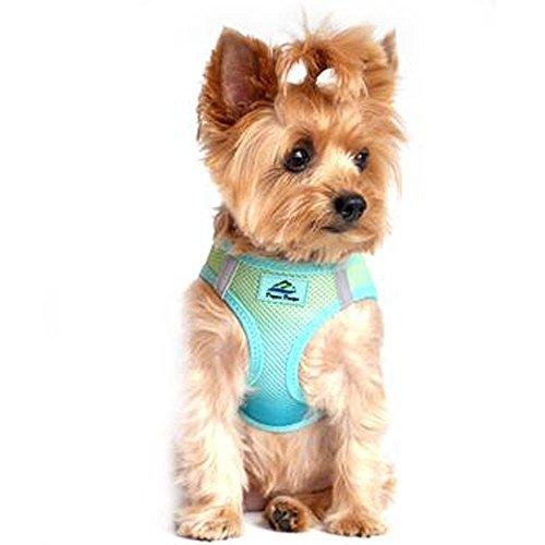 - American River Dog Harness Ombre Collection (M, Aruba Blue)