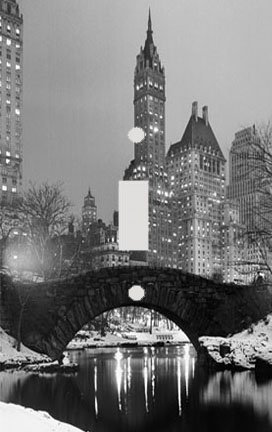 New York City Central Park Decorative Switchplate - Park Outlet City