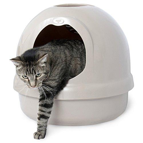 Petmate Booda Dome Litter Box Best Pet Supplies