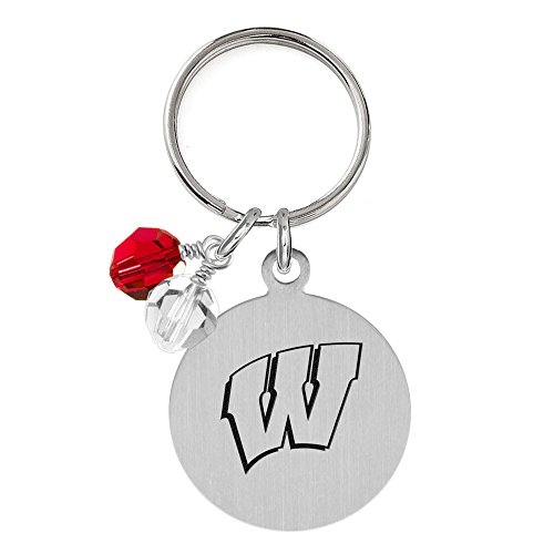 (Wisconsin Badgers Dog Tag with Crystals | Pet Tag | Small Size | Cat Tag | College Pet Tags)