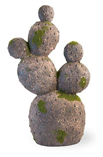 Boston International Cactus Moss Covered Grey 17 Inch Indoor Outdoor Garden ()