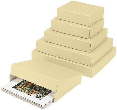 Lineco 20x24u0026quot; Archival Print Storage Box Drop Front Design 3u0026quot; Deep  sc 1 st  Amazon.com & Amazon.com: Boxes - Storage u0026 Presentation Materials: Electronics Aboutintivar.Com