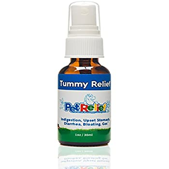 Amazoncom Pet Relief Dog Upset Stomach Bloat And Gas Relief For