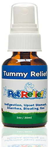 (PET RELIEF Dog Upset Stomach, Bloat And Gas Relief For Dogs, Natural Stomach Relief,! 30ml Dog Farts, Digestion, Sensitive Stomach Relief Spray, No Side Effects! Made In USA)