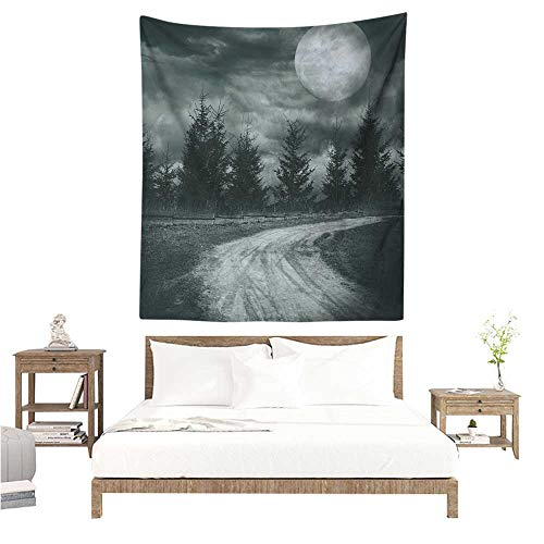 - Agoza Horror House Wall Tapestry for Bedroom Moonrise Magic Landscape with Empty Rural Path to Pines Dramatic Vampire Way Print Home Decorations for Bedroom Dorm Decor 57W x 74L INCH Gray