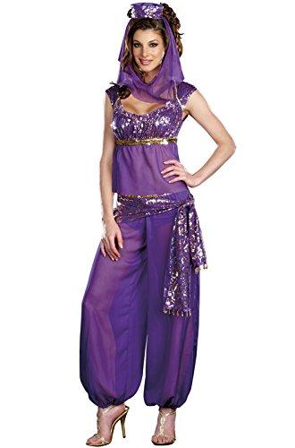 Dreamgirl Women's Ally Kazam Costume, Purple, (Sexy Harem Girl Costumes)