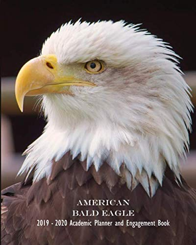 American Bald Eagle 2019 - 2020 Academic Planner and Engagement Book: 8x10 Weekly Monthly Agenda Schedule Calendar Organizer by It's About Time