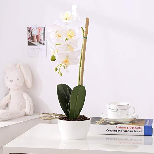 - IMIEE Phaleanopsis Arrangement with Vase Decorative Artificial Orchid Flower Bonsai (White)