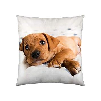 Welpe  40x40 cm Kissenhülle Dekokissen Kissenbezug Fotodruck Hund