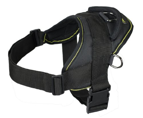 Dean and Tyler DT Dog Harness, Black With Yellow Trim, Medium – Fits Girth Size: 28-Inch to 34-Inch, My Pet Supplies
