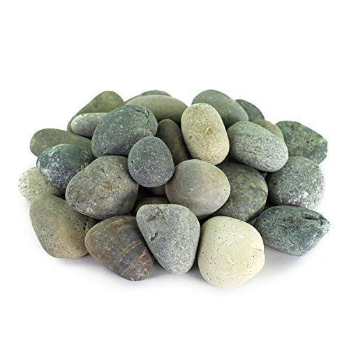 Mexican Beach Pebbles | 20 Pounds of Smooth Unpolished Stones | Hand-Picked, Premium Pebbles for Garden and Landscape Design | Mixed, 2 Inch - 3 Inch ()