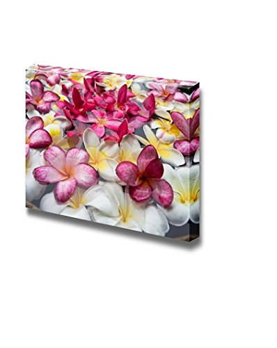 Multicolored Plumerias Floating in The Water Wall Decor ation