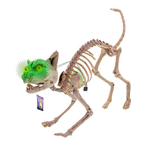 Halloween Haunters Life Size Skeleton Meowing Kitty Cat with Light-Up Green Eyes Prop Decoration - Scary 10 High x 24 Long Creepy Howling Haunted House Kitten